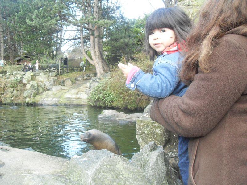Edinburgh Zoo 008